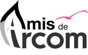 Logo Amis 2016